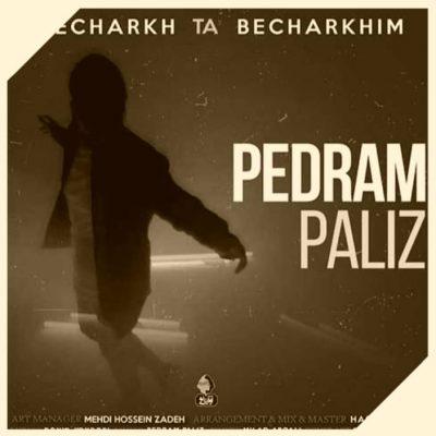 دانلود آهنگ پدرام پالیز بچرخ تا بچرخیم Pedram Paliz Becharkh Ta Becharkhim