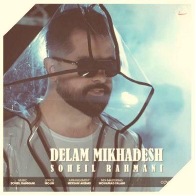 دانلود آهنگ سهیل رحمانی دلم میخوادش Soheil Rahmani Delam Mikhadesh