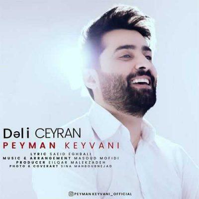 دانلود آهنگ پیمان کیوانی دلی جیران Peyman Keyvani Dali Jeyran