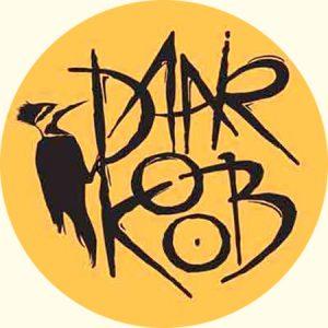 دانلود آهنگ های گروه دارکوب ~ Daarkoob Band