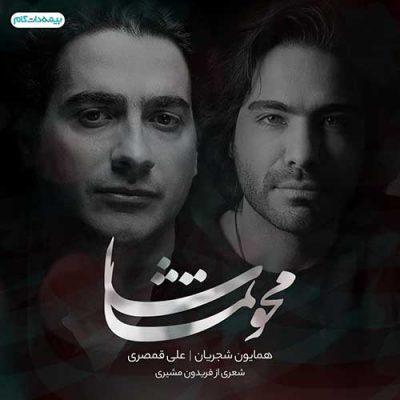 دانلود آهنگ همایون شجریان و علی قمصری محو تماشا Homayoun Shajarian & Ali Ghamsari Mahve Tamasha