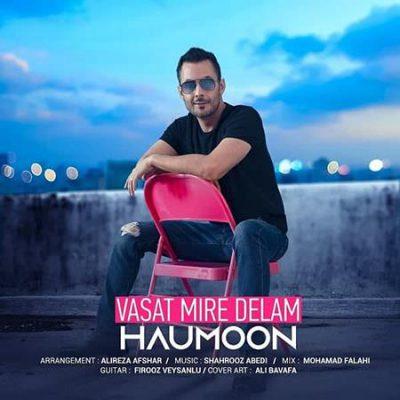 دانلود آهنگ هامون واست میره دلم Haumoon Vasat Mire Delam