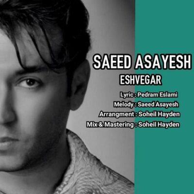 دانلود آهنگ سعید آسایش عشوه گر Saeed Asayesh Eshvegar