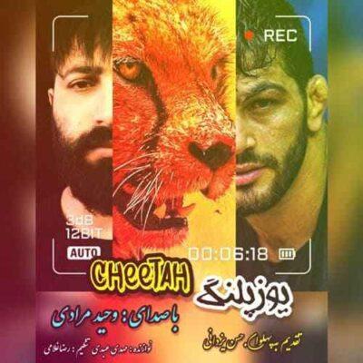 دانلود آهنگ وحید مرادی یوزپلنگ Vahid Moradi Cheetah